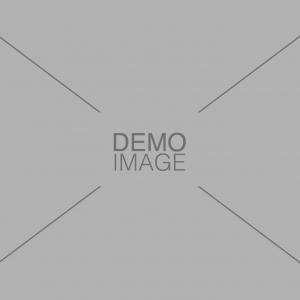 Demo Image 1